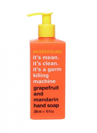Anatomicals Grapefruit and Mandarin Hand Wash (Pack of 2)