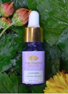 Aura Essence Pure Lavender Essential Oil (Pack of 2)