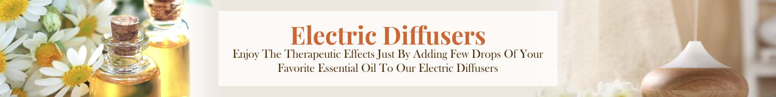 Electric Diffusers