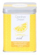 Gardner Street Pyramid Tea Bag  - Lemon Aid (Green Tea with Lemon)