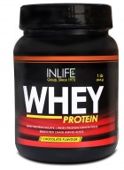 INLIFE Whey Protein Powder Bodybuilding Supplement - 400 g / 0.8 lb (Chocolate Flavour)