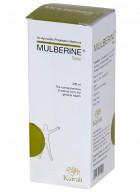 Kairali Mulberine Tonic - Natural tonic for general health - Pack of 5