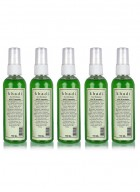 Khadi Mint and Cucumber Face Spray-100ml Set of 5