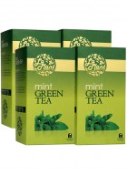 LaPlant Mint Green Tea-100 Tea Bags-Pack of 4