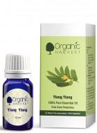 Organic Harvest Ylang Ylang Oil