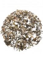 Chai Safari Rosemary Green Tea