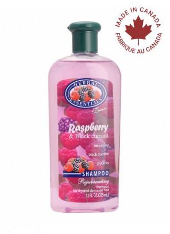 Delon Shampoo Raspberry & Black Currant (Pack of 2)