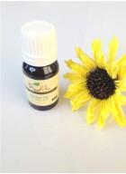 Soil Fragrances Aroma Oil - Jasmine