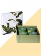 The Tea Shelf Classic Black Box- A Luxurious Gift of 4 Classic Black Teas