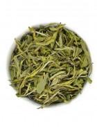 The Tea Shelf Virgin Green Nilgiri Green Tea-Loose Leaf Tea