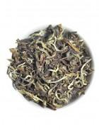 The Tea Shelf Darjeeling Oolong Tea-Loose Leaf Tea